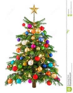 joyfully colorful tree stock images image 35624184