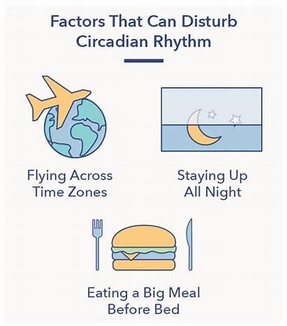 Rhythm Circadian Sleep Health Disruption Sleepopolis Disturbed