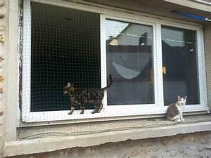 Sécurité Fenêtre Bébé Sans Percer : question pour un filet de protection forum chats ~ Premium-room.com Idées de Décoration