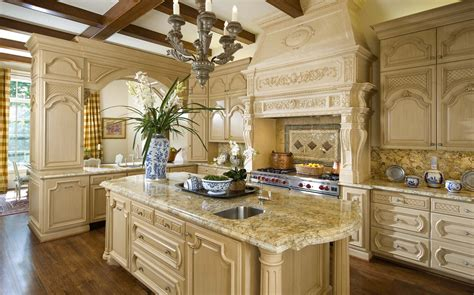 kitchen design for cooks cook s kitchen with large island wolf stove oven in a 4429