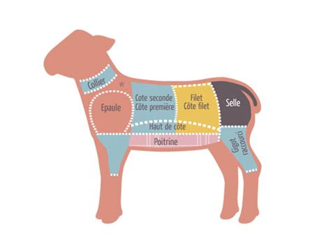 cuisiner une epaule d agneau les morceaux dans le mouton et mode de cuisson mkvh