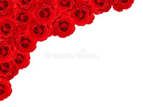 rose border stock image image  feeling bloom dating