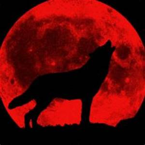 1000+ images about Sdw on Pinterest   Blood moon, Wolves ...