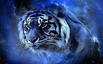 3d 4k Tigers Cool Wallpapers Tiger 1366