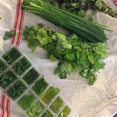 herbes aromatiques en cuisine cuisine conserver ses herbes aromatiques pluie et chocolat
