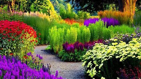jakie rosliny  ogrodu epytaniapl