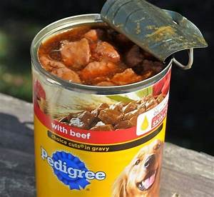 Healthy Nutrition in A Can: Everything About Canned Dog Food