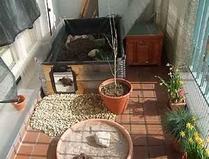 Balkon Ideen Sommer : katzen balkon ideen ~ Markanthonyermac.com Haus und Dekorationen