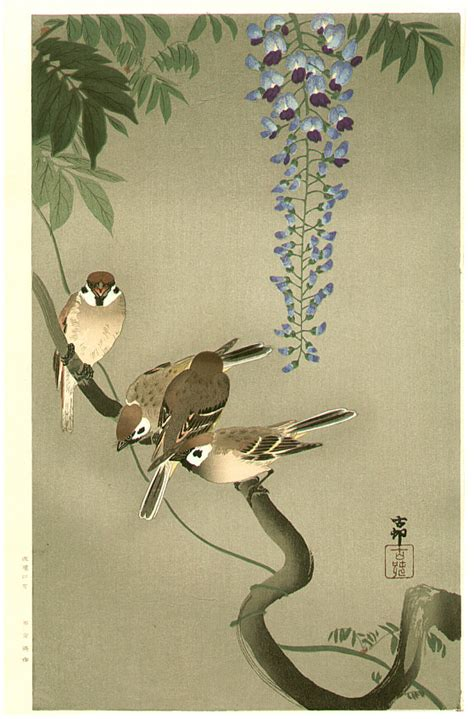 sparrows  wisteria extra large artelino