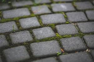 Moos Entfernen Terrasse : wie k nnen sie moos dauerhaft entfernen im rasen und auf ~ Michelbontemps.com Haus und Dekorationen