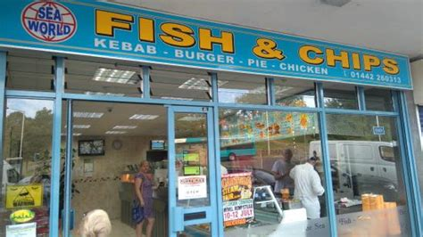 seaworld phone number sea world fish and chip shop hemel hempstead