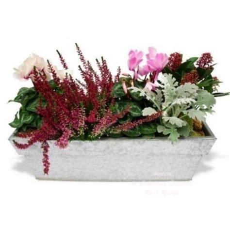 Www Plantes Et Jardins Reduction by Plantes Deuil Paisible Jardin