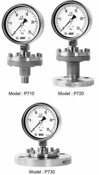 Seal Diaphragm Gauge Pressure P721 Wise Process