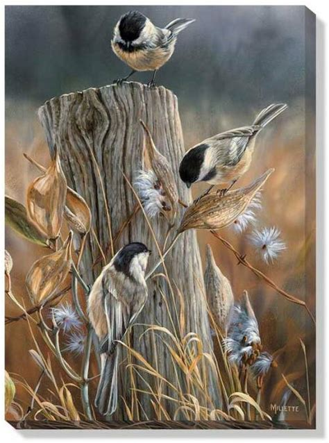 autumn black capped chickadees wrapped canvas art