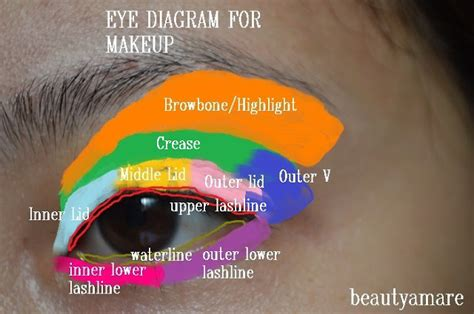 Diagram For Eye Makeup by Diy Do Your Own Eye Make Like A Pro Thewoomag Top