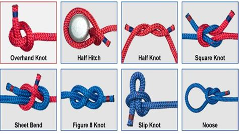fishing knots  rigs tying guide  android