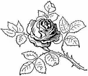 Vintage Clipart Rose | Old Design Shop Blog