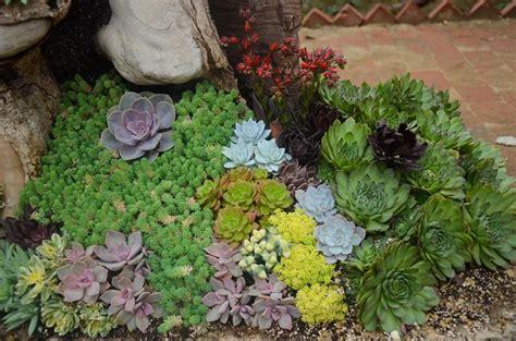 low maintenance landscaping ideas backyard garden lover