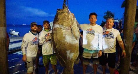 record grouper warsaw fishing international