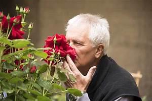 Plus Belles Photos Insolites : alterarosa les plus belles roses aux multiples senteurs en avignon projecteur tv ~ Maxctalentgroup.com Avis de Voitures