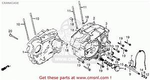 Wiring Diagram For 1984 Honda Trx 200