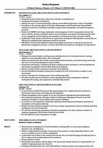 Organizational Development Resume Samples