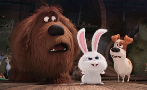 See more of the secret life of pets on facebook. The Secret Life of Pets Best Quotes - 'Liberate forever ...