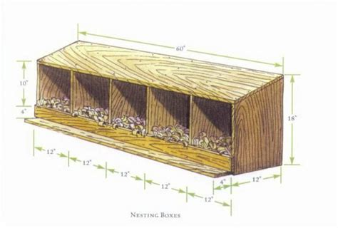 How Big Should A Chicken Coop Nesting Box Be Lucas