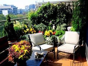 Balcony (container) gardening in Toronto Historic Toronto