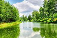 Beautiful Green Nature Landscape