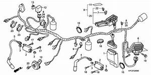 Wire Harness For 2001 Honda Xl125
