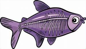 Cartoon X-Ray Fish Illustration