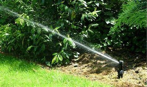 Gartenbewässerung Vom Landschaftsgärtner Schradi
