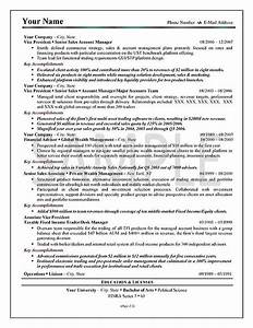 Sample resume executive summary best resume gallery for Executive summary resume