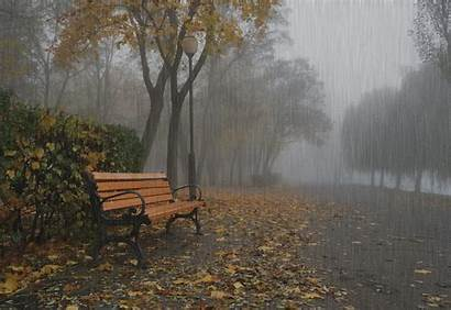 Rain Autumn Moving Passion
