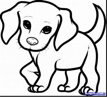 Coloring Puppy Pages Dog