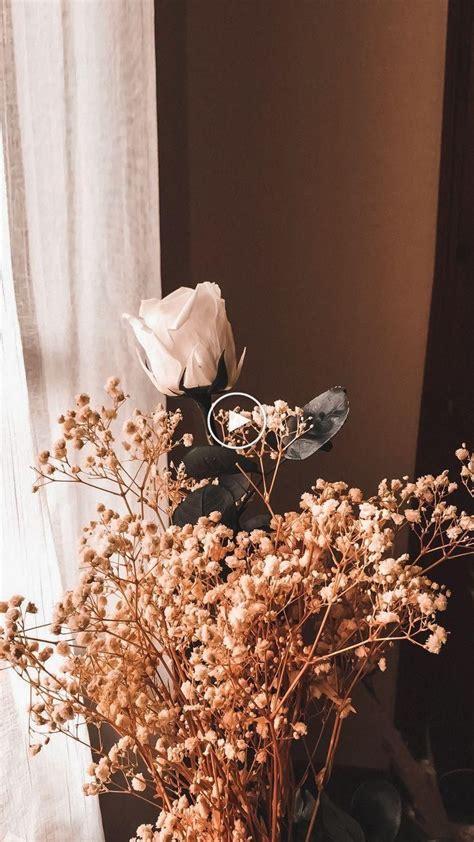 the sun will through flower background