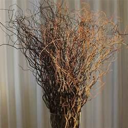 bulk hydrangeas curly willow branches green bulk fresh