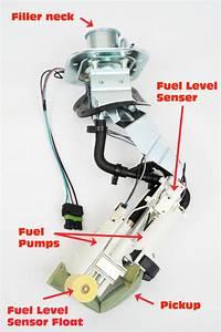 Wiring Diagram Database  1990 Chevy 1500 Fuel Pump Wiring