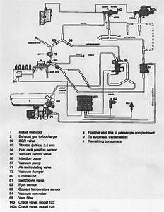 Vacuum Lines And Random Wiring  Sensors - Help