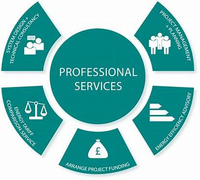 Professional Services Infographic Mo Ongen Ltd