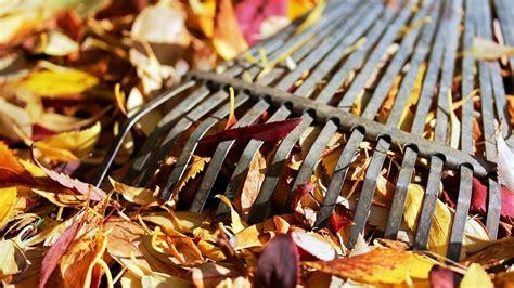 Garten Im Herbst Pflegen by Garten Im Herbst So Machen Sie Ihren Garten Winterfest