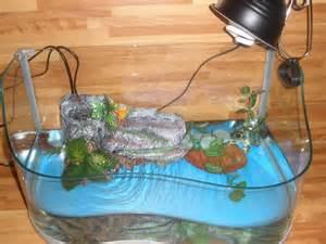 Acquario per tartarughe d acqua accessori