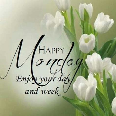 Morning Happy Monday Images Happy Monday Enjoy Your Day And Your Week Pictures Photos