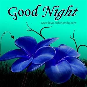 Cute Good Night   Good Night Wishes with Cute Beautiful ...