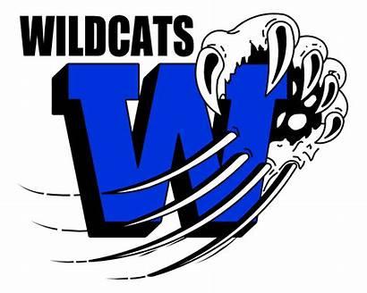 Unique Wildcat Mascot Logos Vector Clipart Baseball