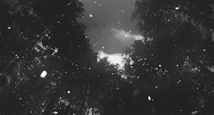 snow falling gif | Tumblr