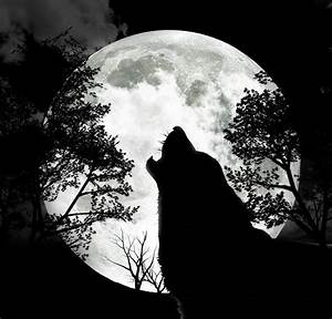 The Full Wolf Moon – 9th January '12 | Lost in a daydream