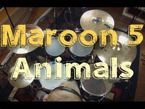 animals maroon  drum cover  lars nijman youtube