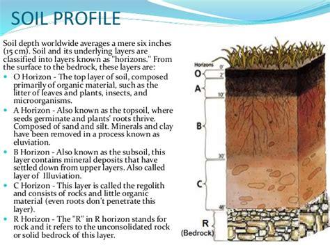 Horticulture Soils